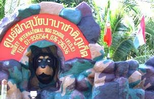 Phuket International Dog School (PIDS)
